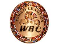 Чемпионские пояса в профессиональном боксе